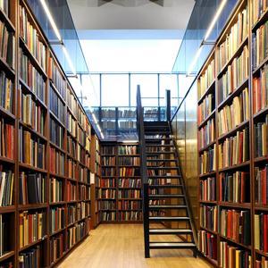 Библиотеки Полушкино