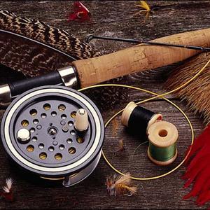 Охотничьи и рыболовные магазины Полушкино