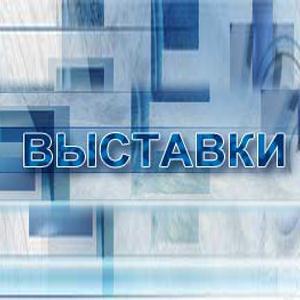 Выставки Полушкино
